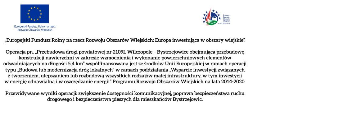 Przebudowa drogi Wilczopole – Bystrzejowice